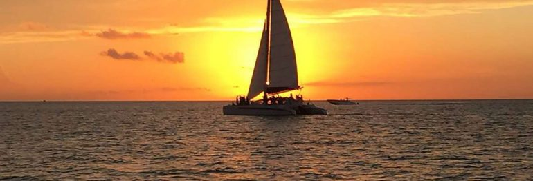 Summer Sunset Celebrations with LIVE Steel Drum Band Music